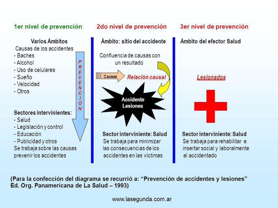 (Para la confección del diagrama se recurrió a: Prevención de accidentes y lesiones Ed.