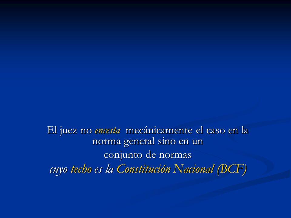 El juez no encesta mecánicamente el caso en la norma general sino en un conjunto de normas cuyo techo es la Constitución Nacional (BCF)
