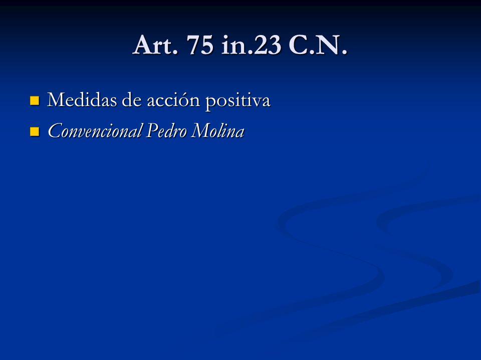 Art. 75 in.23 C.N. Medidas de acción positiva Medidas de acción positiva Convencional Pedro Molina Convencional Pedro Molina