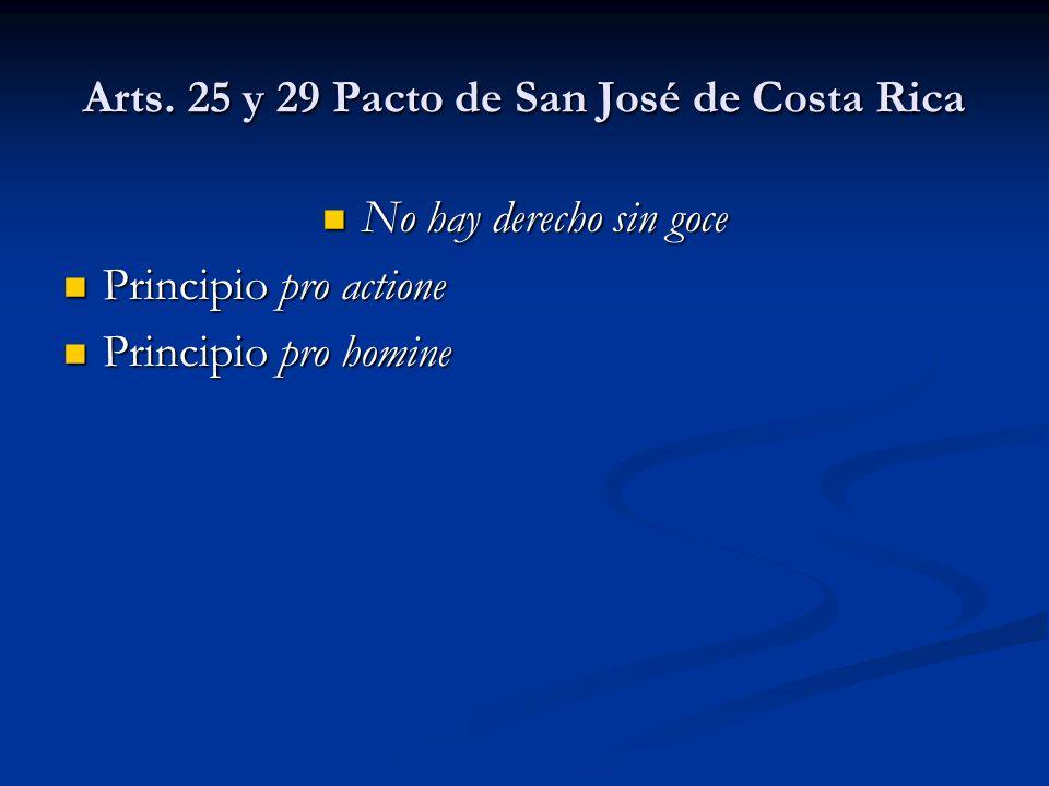 Arts. 25 y 29 Pacto de San José de Costa Rica No hay derecho sin goce No hay derecho sin goce Principio pro actione Principio pro actione Principio pr