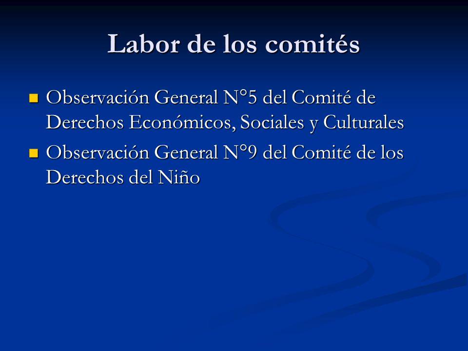 Labor de los comités Observación General N°5 del Comité de Derechos Económicos, Sociales y Culturales Observación General N°5 del Comité de Derechos E