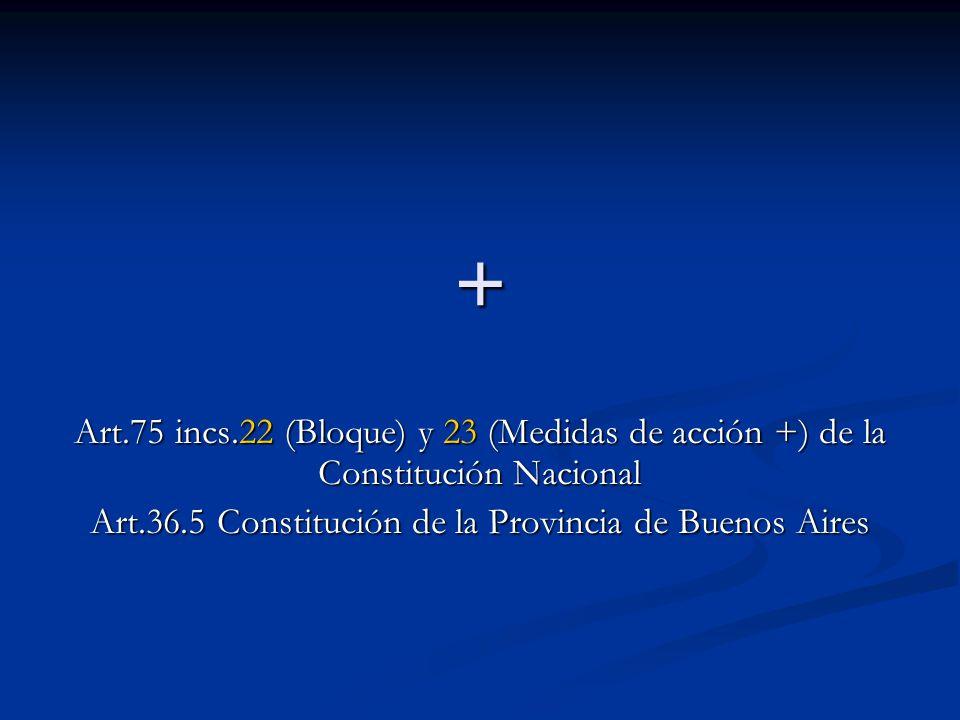 + Art.75 incs.22 (Bloque) y 23 (Medidas de acción +) de la Constitución Nacional Art.36.5 Constitución de la Provincia de Buenos Aires