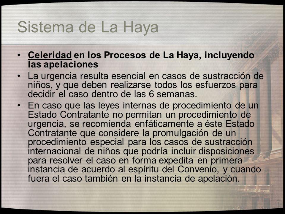 Sistema de La Haya Naturaleza de los procedimientos en el Convenio de La Haya de 1980 Los jueces deben mantener una distinción clara entre los procedimientos de restitución de un menor bajo el Convenio de La Haya y una audiencia para evaluar los méritos relacionados con la custodia y el derecho de visita.