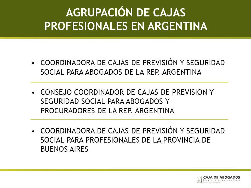 AGRUPACIÓN DE CAJAS PROFESIONALES EN ARGENTINA COORDINADORA DE CAJAS DE PREVISIÓN Y SEGURIDAD SOCIAL PARA ABOGADOS DE LA REP. ARGENTINA CONSEJO COORDI