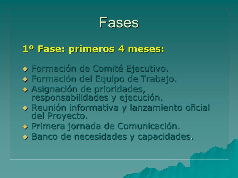 1º Fase: primeros 4 meses: Formación de Comité Ejecutivo.
