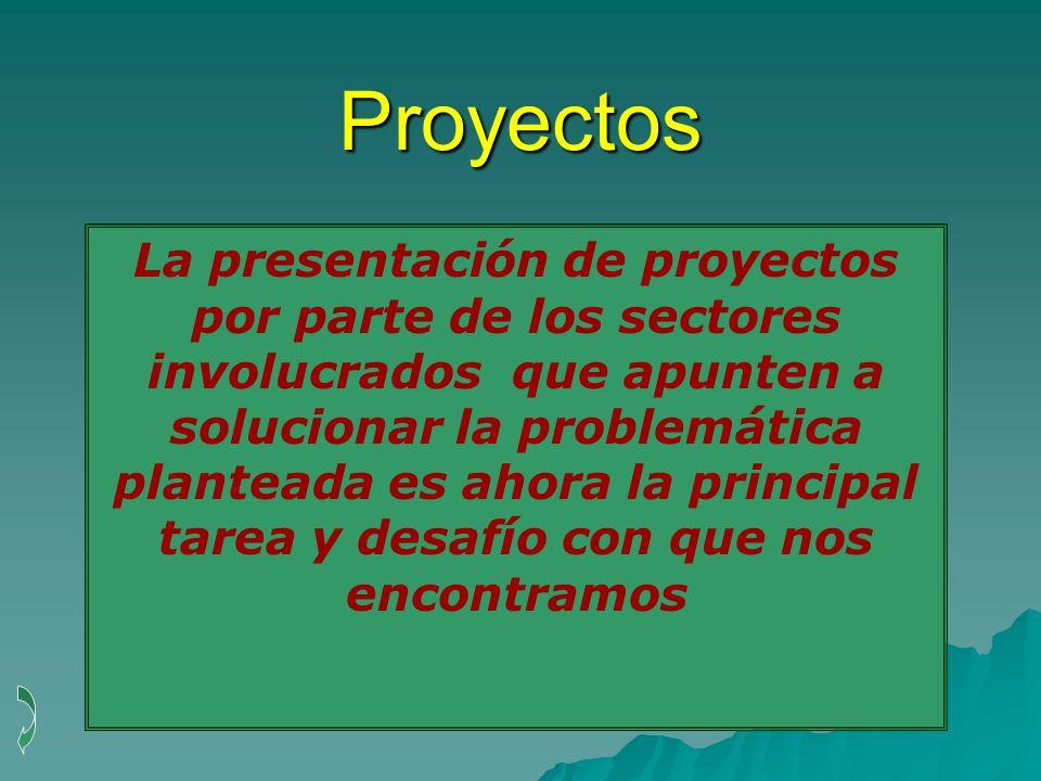 Proyectos La presentación de proyectos por parte de los sectores involucrados que apunten a solucionar la problemática planteada es ahora la principal tarea y desafío con que nos encontramos