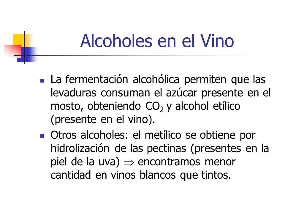 Alcoholes en el Vino La fermentación alcohólica permiten que las levaduras consuman el azúcar presente en el mosto, obteniendo CO 2 y alcohol etílico (presente en el vino).
