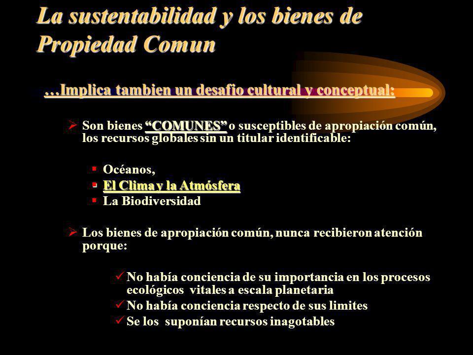La sustentabilidad y los bienes de Propiedad Comun …Implica tambien un desafio cultural y conceptual: COMUNES Son bienes COMUNES o susceptibles de apr
