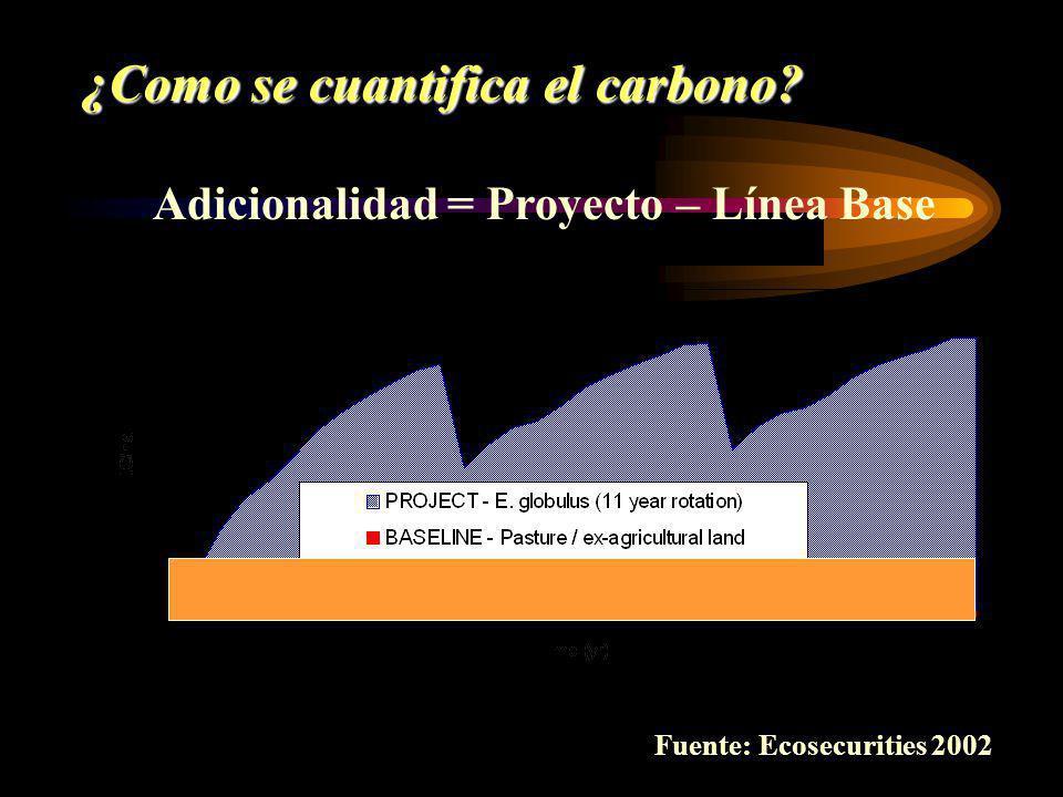 Adicionalidad = Proyecto – Línea Base ¿Como se cuantifica el carbono? Fuente: Ecosecurities 2002