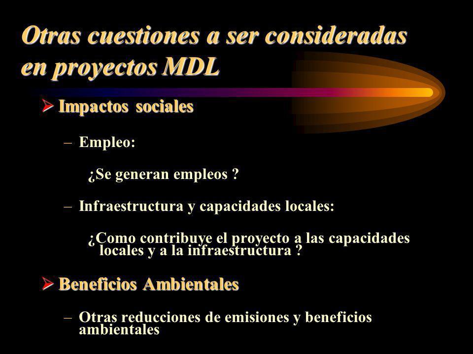 Otras cuestiones a ser consideradas en proyectos MDL Impactos sociales Impactos sociales –Empleo: ¿Se generan empleos ? –Infraestructura y capacidades