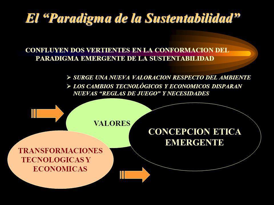 El Paradigma de la Sustentabilidad CONFLUYEN DOS VERTIENTES EN LA CONFORMACION DEL PARADIGMA EMERGENTE DE LA SUSTENTABILIDAD SURGE UNA NUEVA VALORACIO