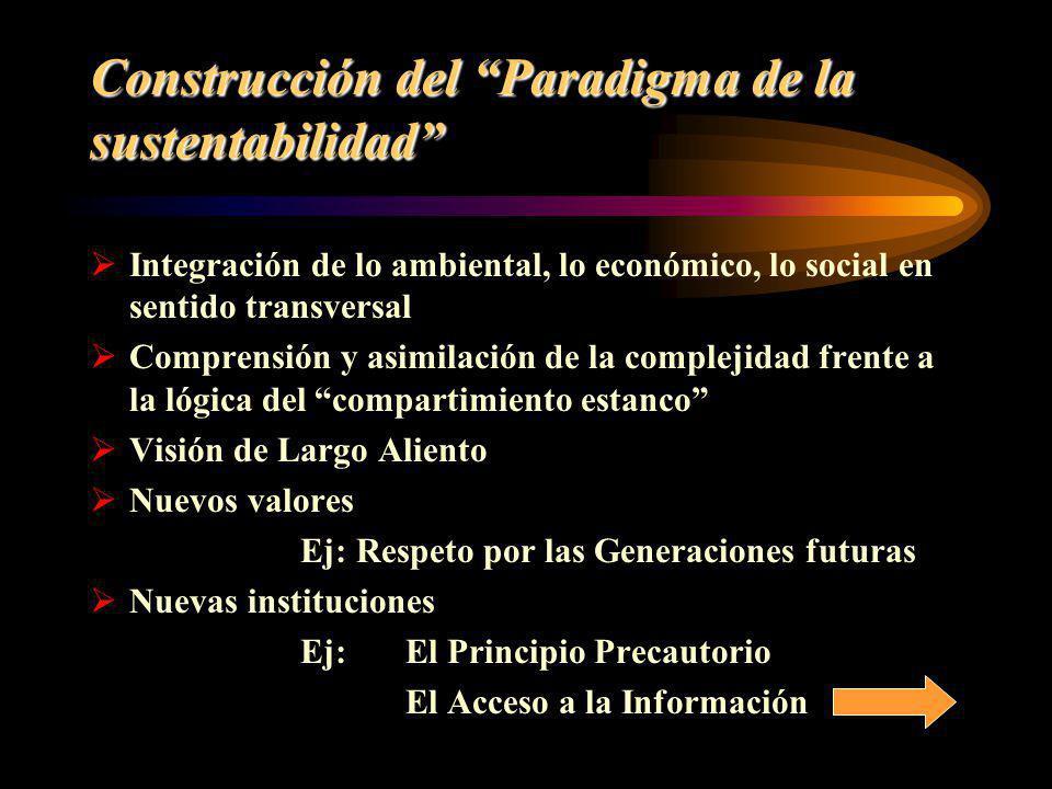Construcción del Paradigma de la sustentabilidad Integración de lo ambiental, lo económico, lo social en sentido transversal Comprensión y asimilación