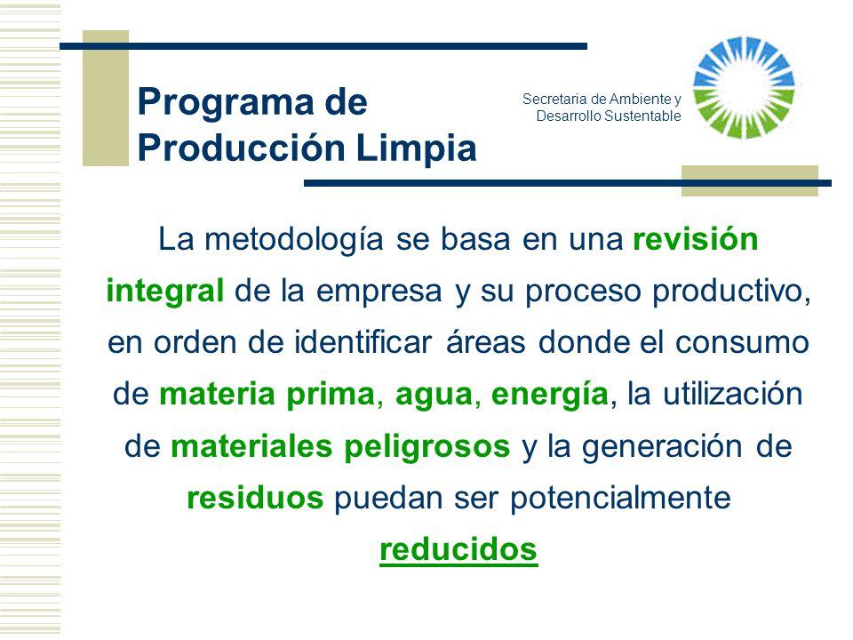 Secretaria de Ambiente y Desarrollo Sustentable La metodología se basa en una revisión integral de la empresa y su proceso productivo, en orden de ide