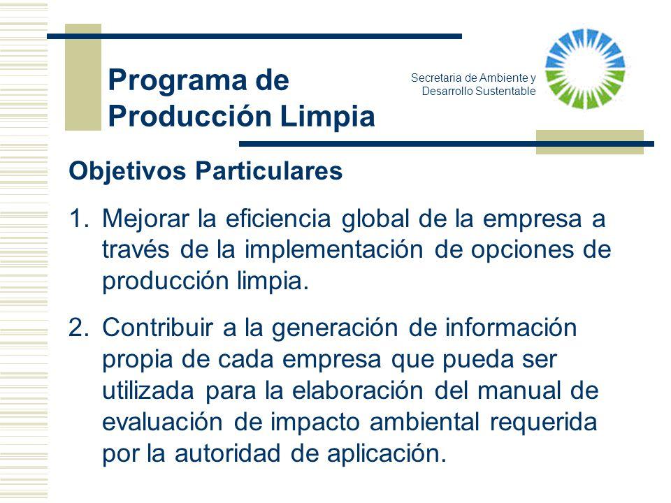 Objetivos Particulares 1.Mejorar la eficiencia global de la empresa a través de la implementación de opciones de producción limpia. 2.Contribuir a la