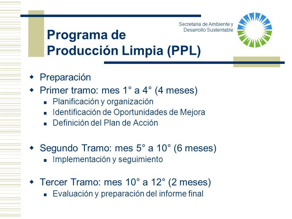 Preparación Primer tramo: mes 1° a 4° (4 meses) Planificación y organización Identificación de Oportunidades de Mejora Definición del Plan de Acción S