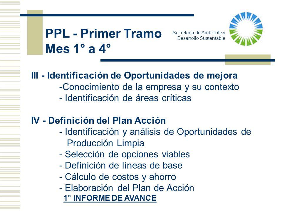 Secretaria de Ambiente y Desarrollo Sustentable PPL - Primer Tramo Mes 1° a 4° III - Identificación de Oportunidades de mejora -Conocimiento de la emp