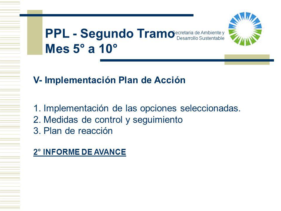 Secretaria de Ambiente y Desarrollo Sustentable V- Implementación Plan de Acción 1. Implementación de las opciones seleccionadas. 2. Medidas de contro