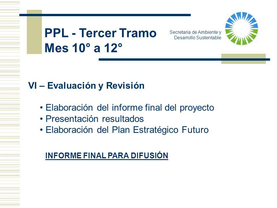 Secretaria de Ambiente y Desarrollo Sustentable VI – Evaluación y Revisión Elaboración del informe final del proyecto Presentación resultados Elaborac