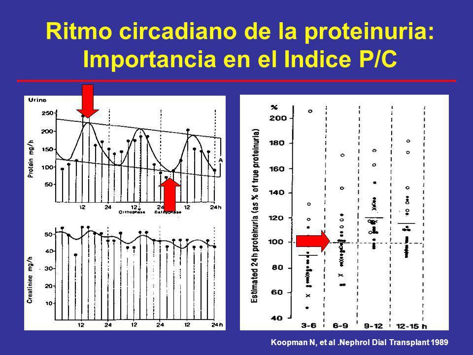 Koopman N, et al.Nephrol Dial Transplant 1989 Ritmo circadiano de la proteinuria: Importancia en el Indice P/C