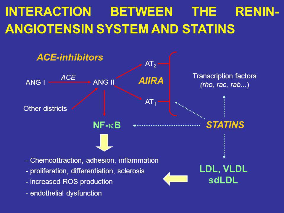 INTERACTION BETWEEN THE RENIN- ANGIOTENSIN SYSTEM AND STATINS ANG I ANG II AT 2 AT 1 ACE ACE-inhibitors Other districts AIIRA STATINS Transcription factors (rho, rac, rab...) NF- B - Chemoattraction, adhesion, inflammation - proliferation, differentiation, sclerosis - increased ROS production - endothelial dysfunction LDL, VLDL sdLDL