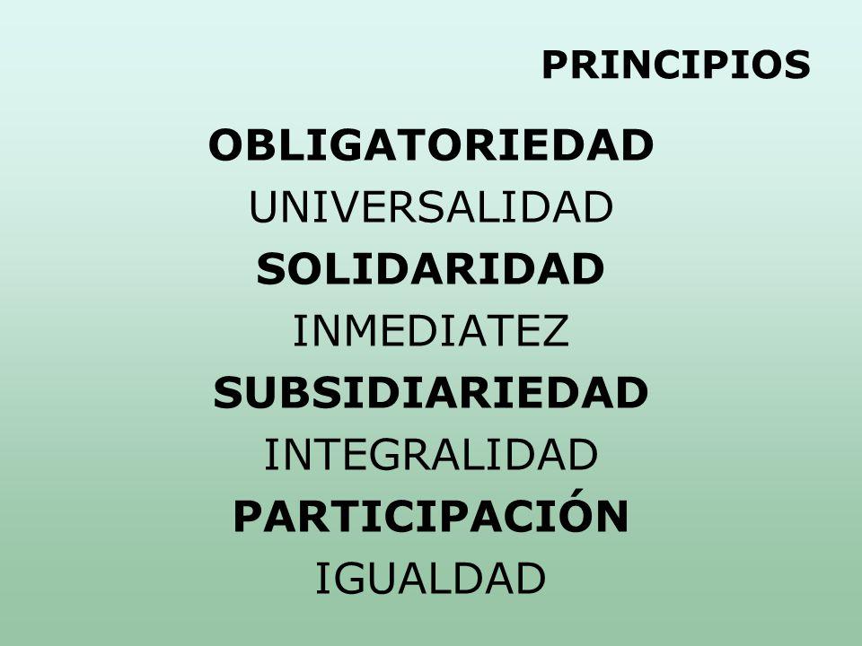 PRINCIPIOS OBLIGATORIEDAD UNIVERSALIDAD SOLIDARIDAD INMEDIATEZ SUBSIDIARIEDAD INTEGRALIDAD PARTICIPACIÓN IGUALDAD
