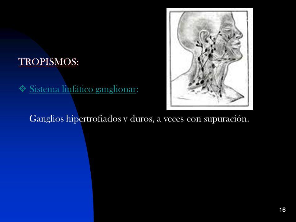 16 TROPISMOS: Sistema linfático ganglionar: Ganglios hipertrofiados y duros, a veces con supuración.