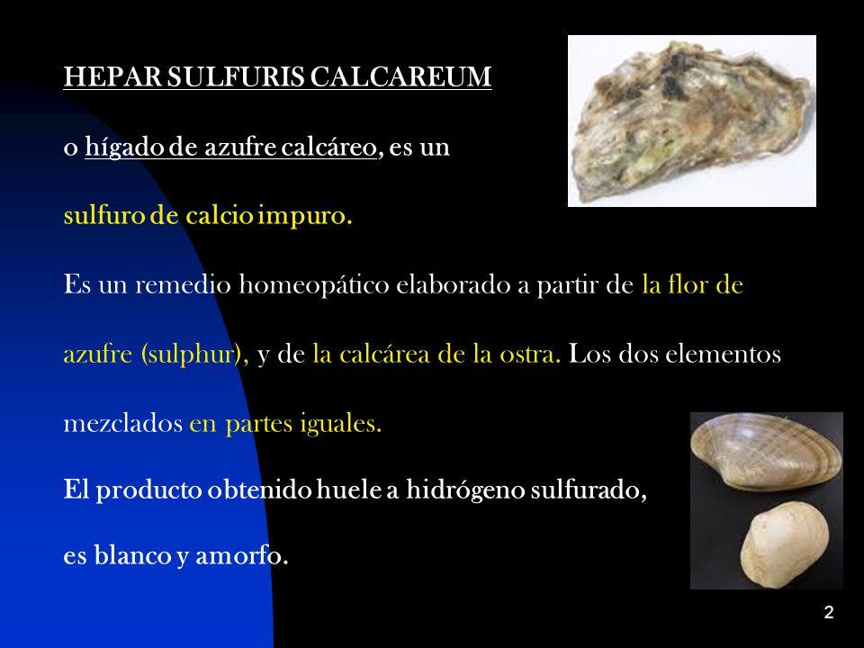 2 HEPAR SULFURIS CALCAREUM o hígado de azufre calcáreo, es un sulfuro de calcio impuro.