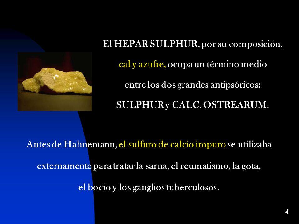 4 El HEPAR SULPHUR, por su composición, cal y azufre, ocupa un término medio entre los dos grandes antipsóricos: SULPHUR y CALC.