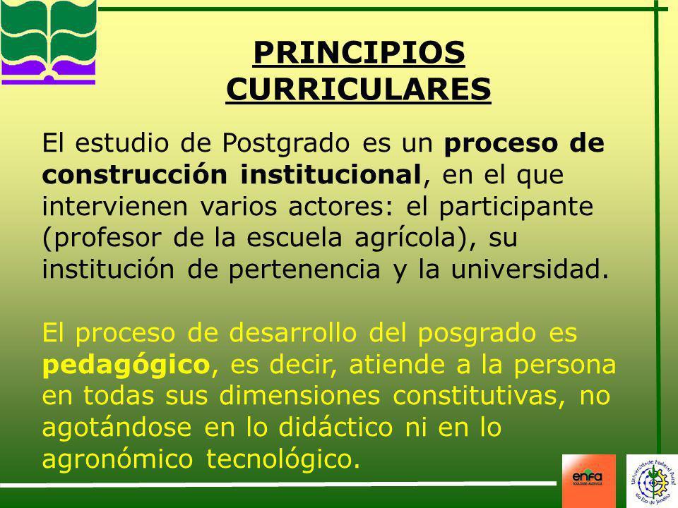 PRINCIPIOS CURRICULARES El estudio de Postgrado es un proceso de construcción institucional, en el que intervienen varios actores: el participante (pr