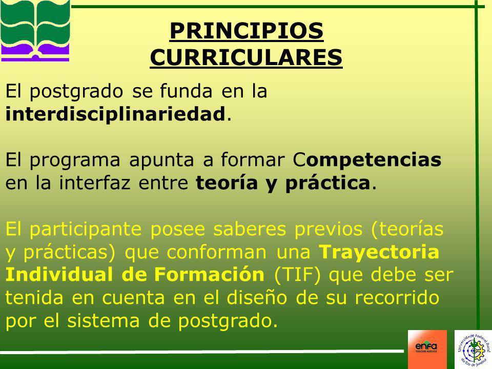 PRINCIPIOS CURRICULARES El postgrado se funda en la interdisciplinariedad. El programa apunta a formar Competencias en la interfaz entre teoría y prác