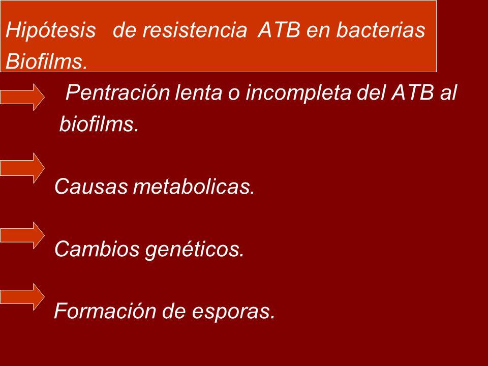 Hipótesis de resistencia ATB en bacterias Biofilms.