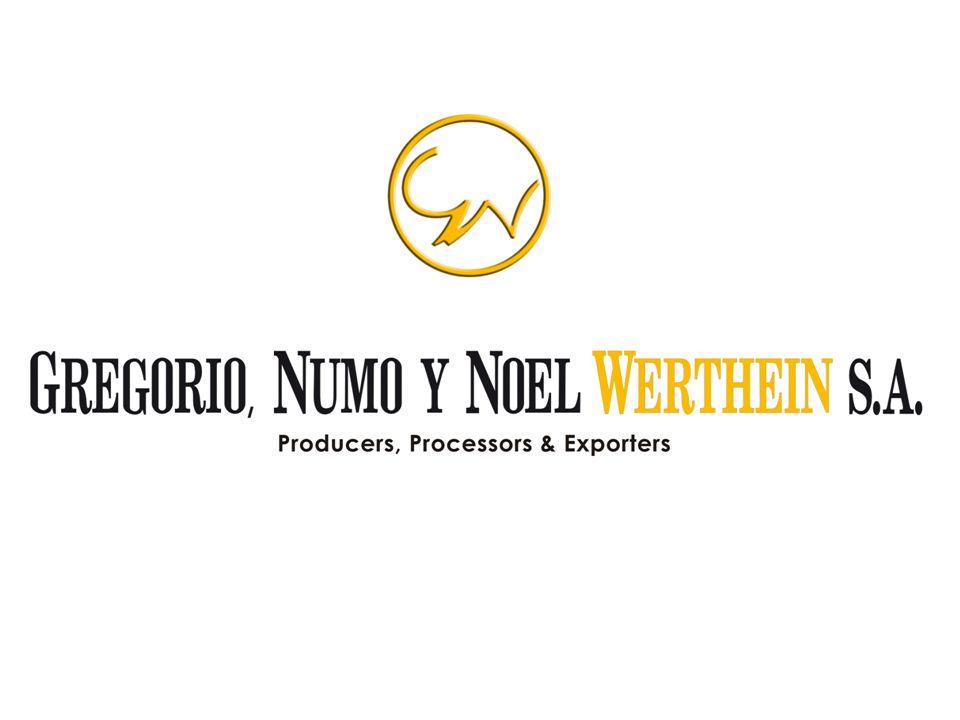 Gregorio, Numo y Noel Werthein S.A.: Productor – Procesador – Exportador.