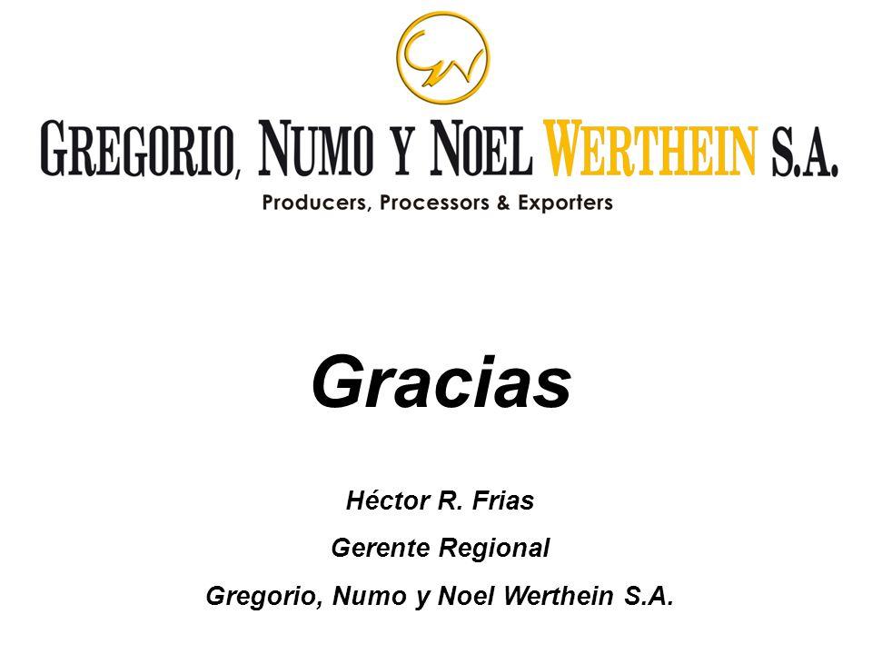 Gracias Héctor R. Frias Gerente Regional Gregorio, Numo y Noel Werthein S.A.