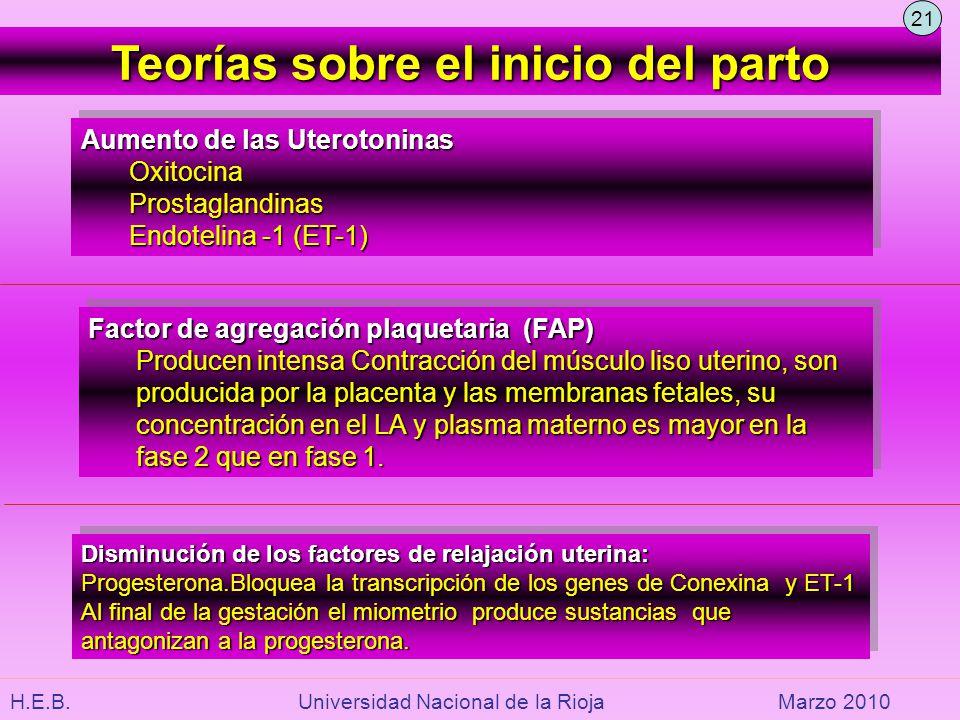 H.E.B. Universidad Nacional de la RiojaMarzo 2010 Teorías sobre el inicio del parto Aumento de las Uterotoninas OxitocinaProstaglandinas Endotelina -1