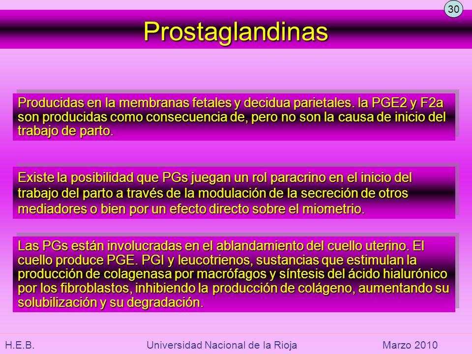 H.E.B. Universidad Nacional de la RiojaMarzo 2010 Prostaglandinas Producidas en la membranas fetales y decidua parietales. la PGE2 y F2a son producida