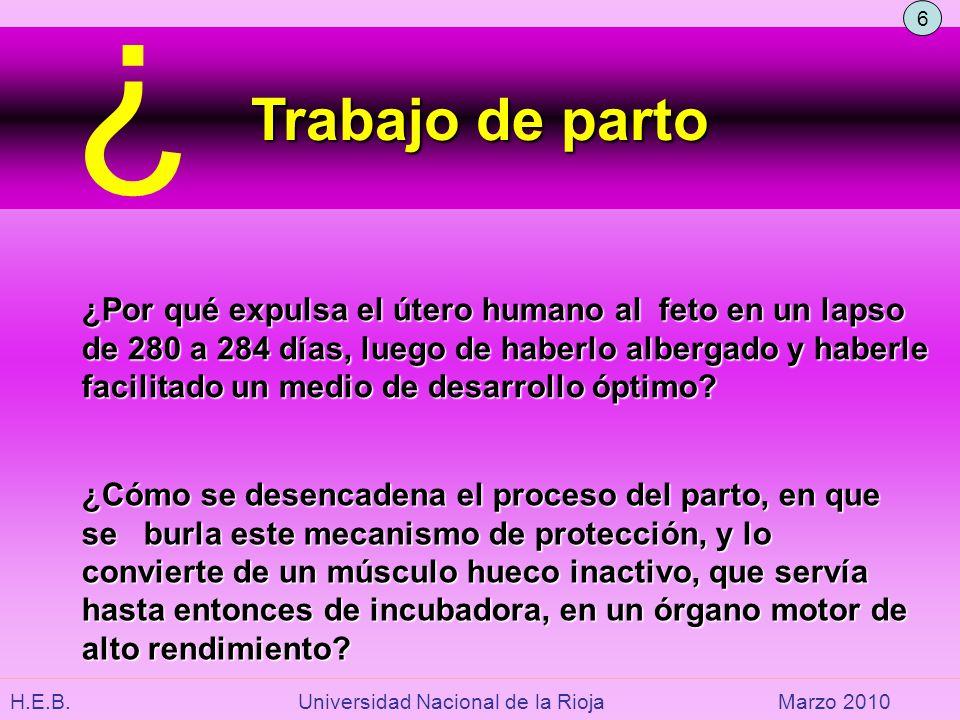 H.E.B. Universidad Nacional de la RiojaMarzo 2010 Trabajo de parto ¿Cómo se desencadena el proceso del parto, en que se burla este mecanismo de protec