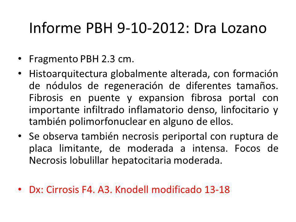 Informe PBH 9-10-2012: Dra Lozano Fragmento PBH 2.3 cm. Histoarquitectura globalmente alterada, con formación de nódulos de regeneración de diferentes