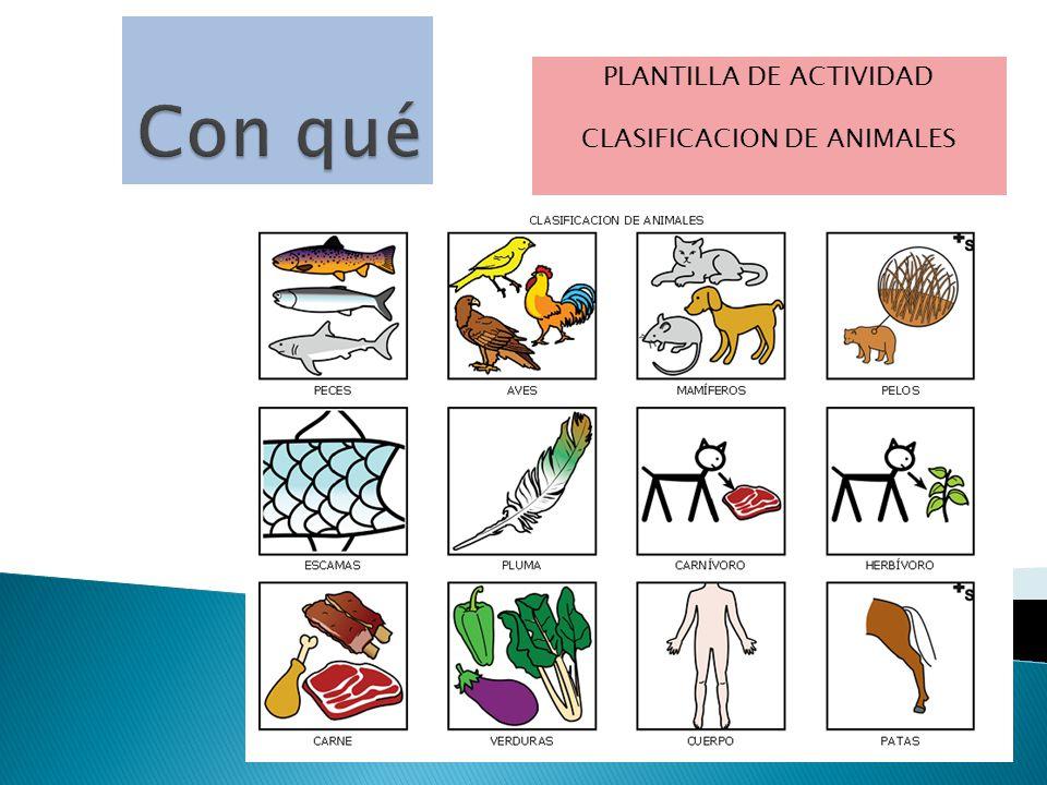 PLANTILLA DE ACTIVIDAD CLASIFICACION DE ANIMALES