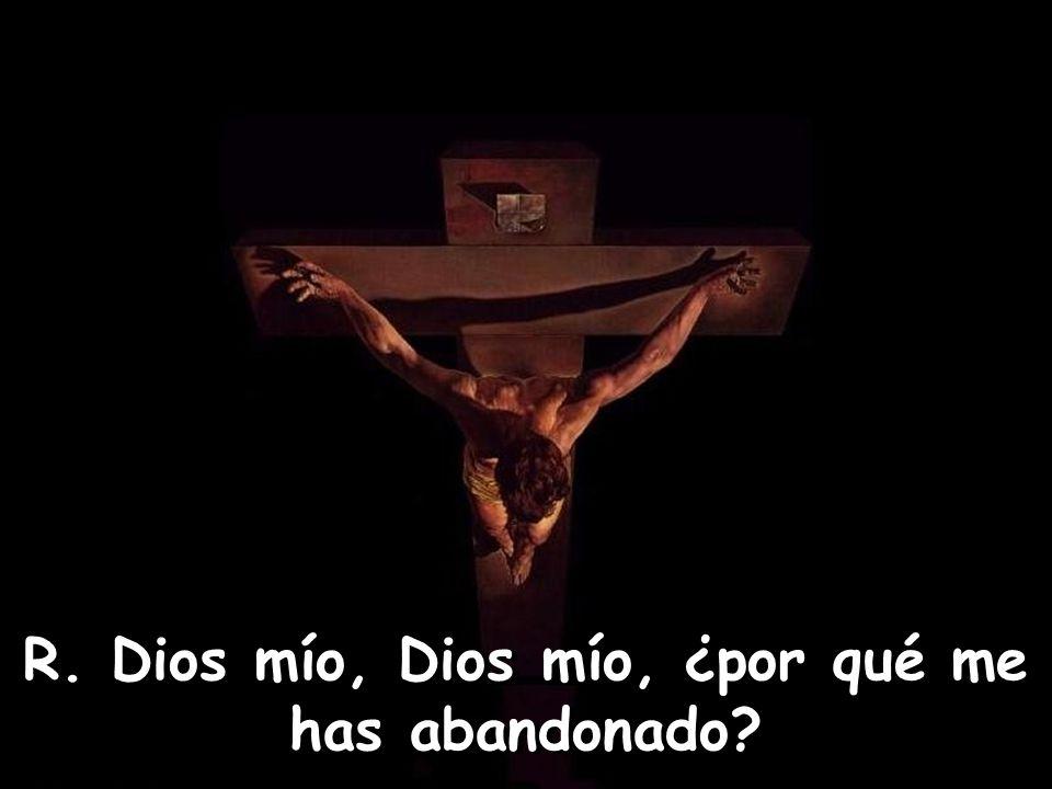 Los que me ven, se burlan de mí, hacen una mueca y mueven la cabeza, diciendo: Confió en el Señor, que él lo libre; que lo salve, si lo quiere tanto.