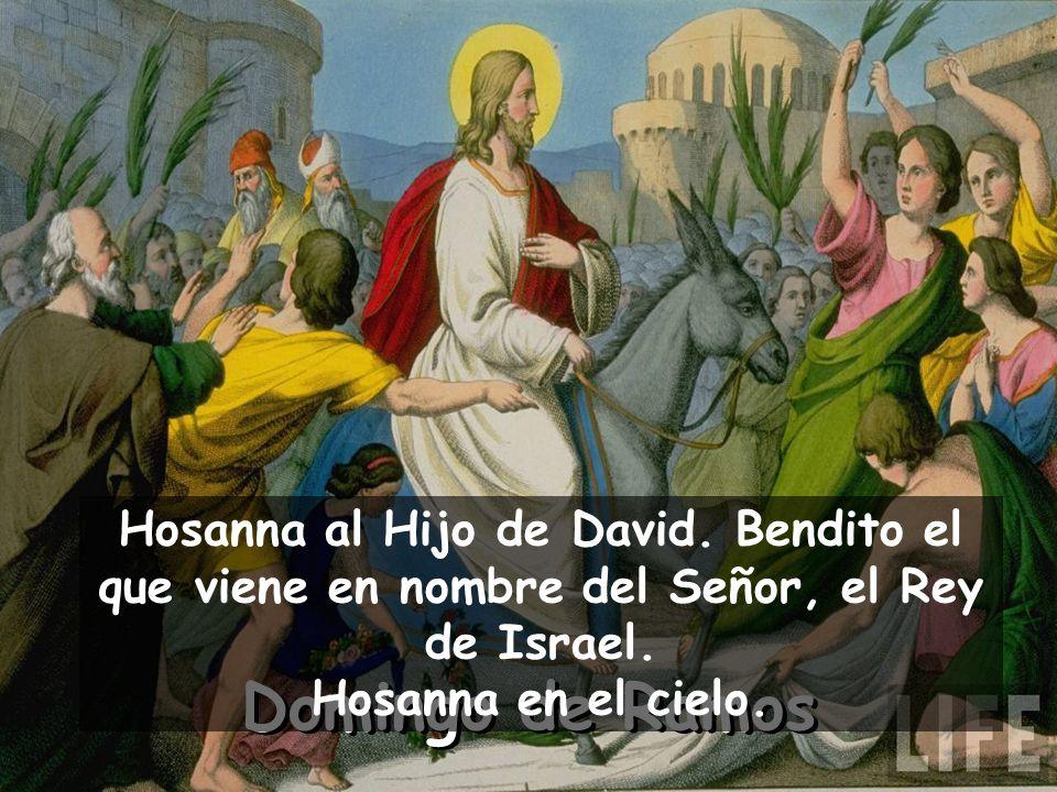 Domingo de Ramos Hosanna al Hijo de David.