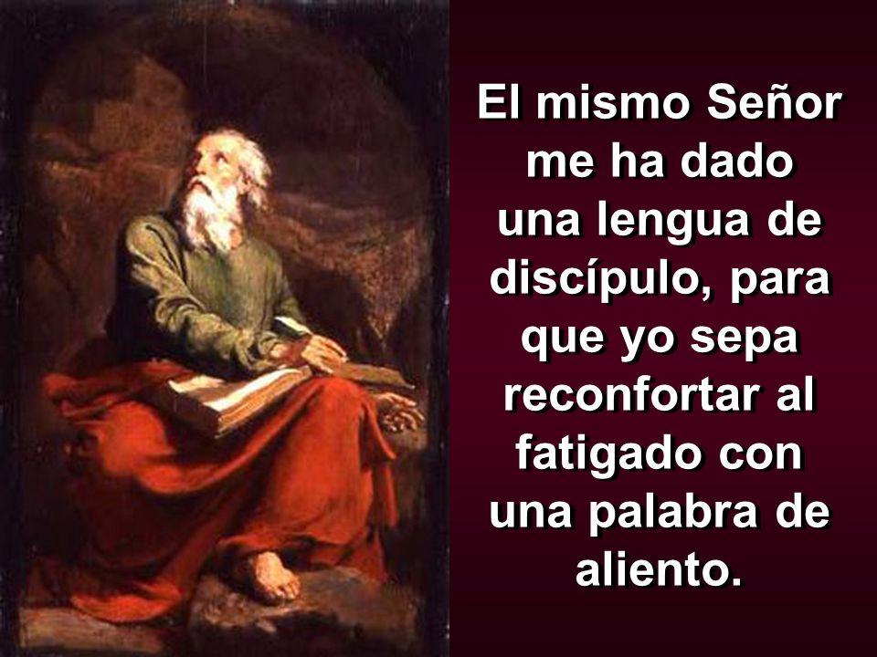 El mismo Señor me ha dado una lengua de discípulo, para que yo sepa reconfortar al fatigado con una palabra de aliento.