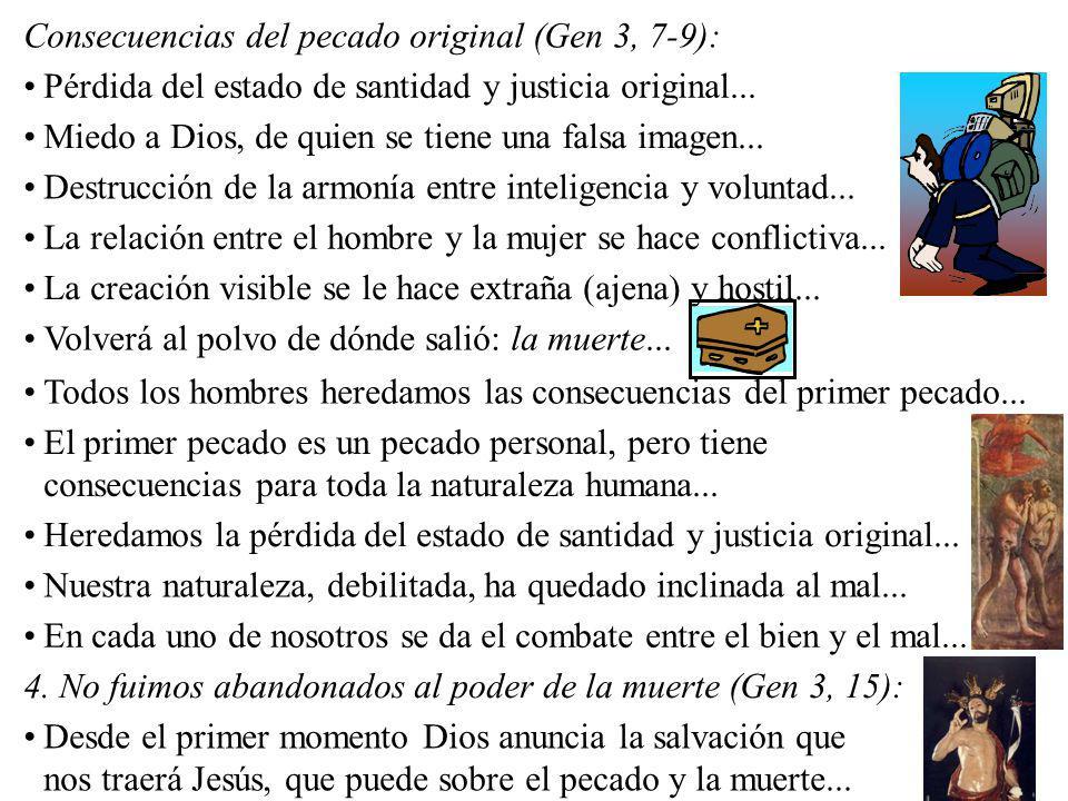 Consecuencias del pecado original (Gen 3, 7-9): Pérdida del estado de santidad y justicia original... Miedo a Dios, de quien se tiene una falsa imagen