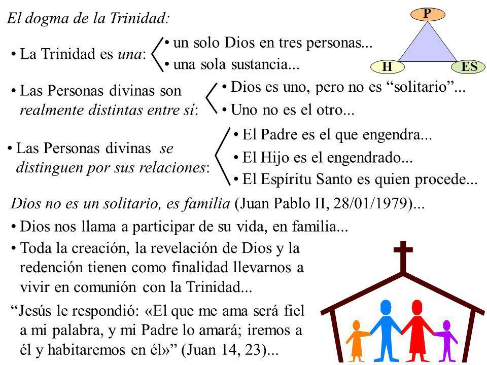 El dogma de la Trinidad: La Trinidad es una: un solo Dios en tres personas... una sola sustancia... Las Personas divinas son realmente distintas entre