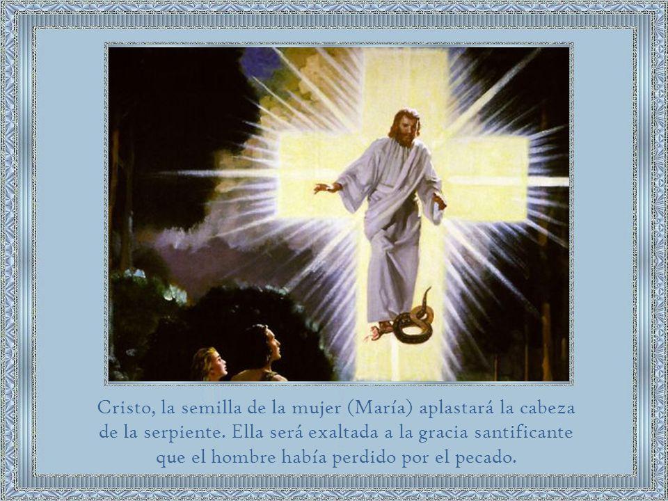El primer pasaje que contiene la promesa de la redención (Gn 3:15) menciona a la Madre del Redentor.