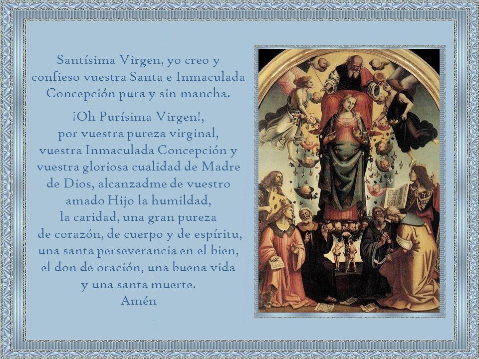 La Inmaculada Concepción de la Santísima Virgen María tiene un llamado para nosotros: 1-Nos llama a la purificación.