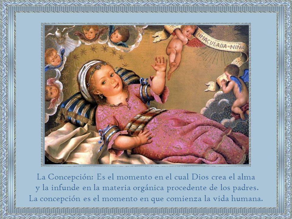 ...declaramos, proclamamos y definimos que la doctrina que sostiene que la beatísima Virgen María fue preservada inmune de toda mancha de la culpa original en el primer instante de su concepción por singular gracia y privilegio de Dios omnipotente, en atención a los méritos de Cristo Jesús Salvador del género humano, está revelada por Dios y debe ser por tanto firme y constantemente creída por todos los fieles...