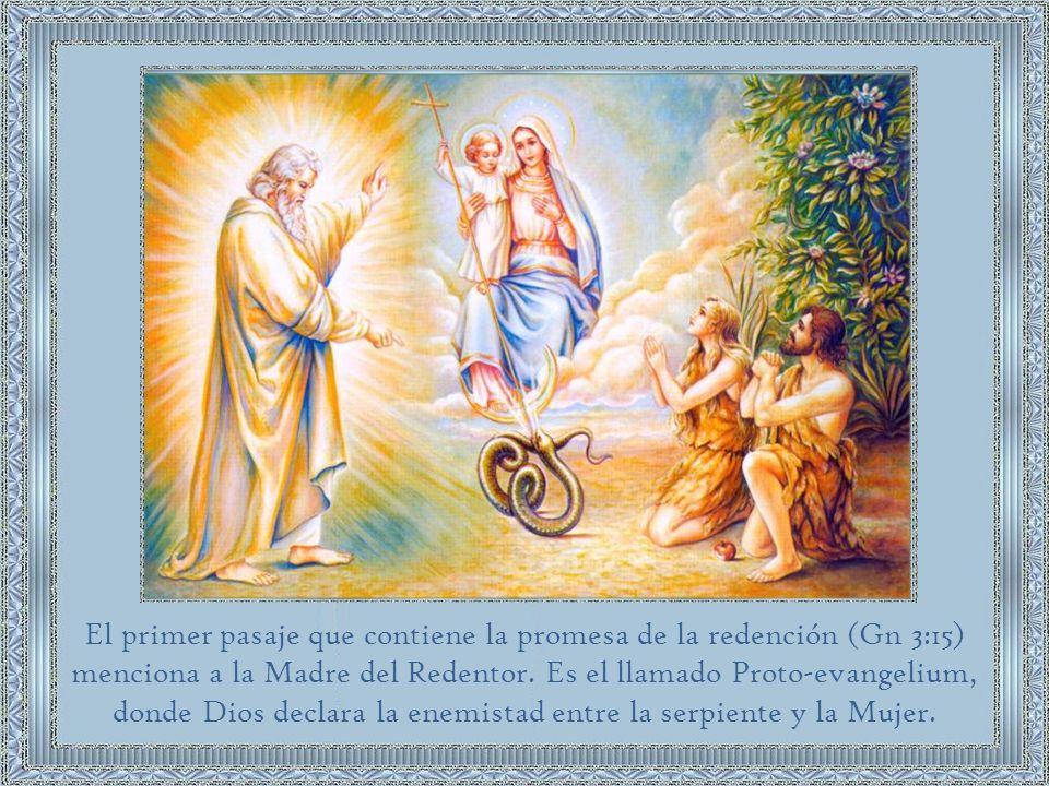 La Biblia no menciona explícitamente el dogma de la Inmaculada Concepción, como tampoco menciona explícitamente muchas otras doctrinas que la Iglesia recibió de los Apóstoles.