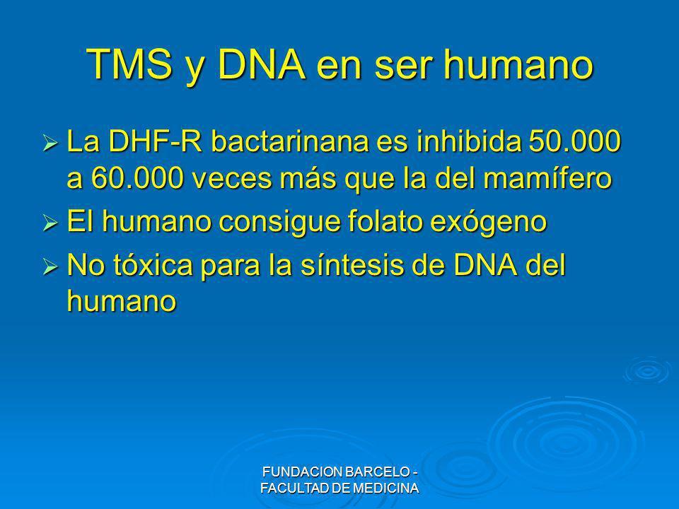 FUNDACION BARCELO - FACULTAD DE MEDICINA TMS y DNA en ser humano La DHF-R bactarinana es inhibida 50.000 a 60.000 veces más que la del mamífero La DHF
