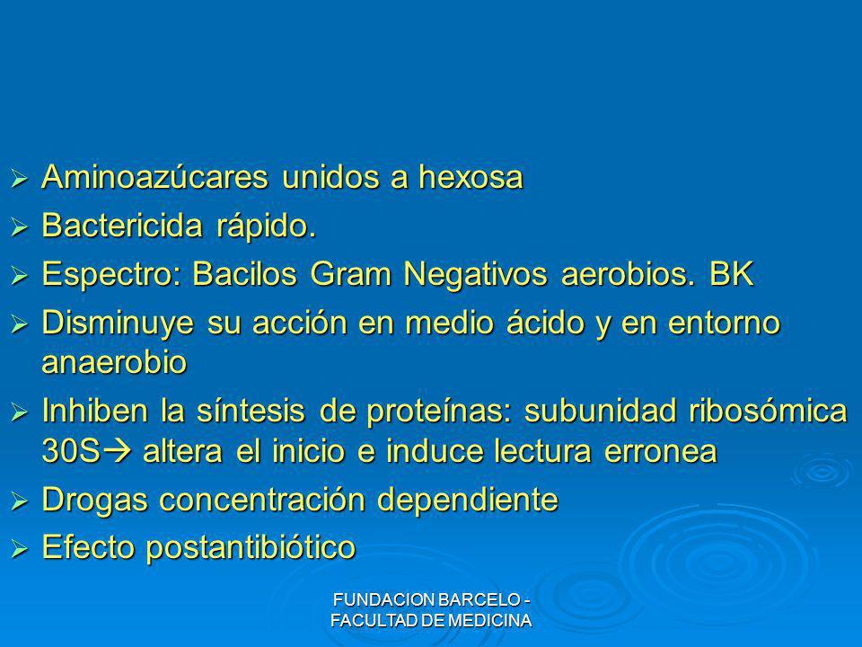 FUNDACION BARCELO - FACULTAD DE MEDICINA Aminoazúcares unidos a hexosa Aminoazúcares unidos a hexosa Bactericida rápido. Bactericida rápido. Espectro: