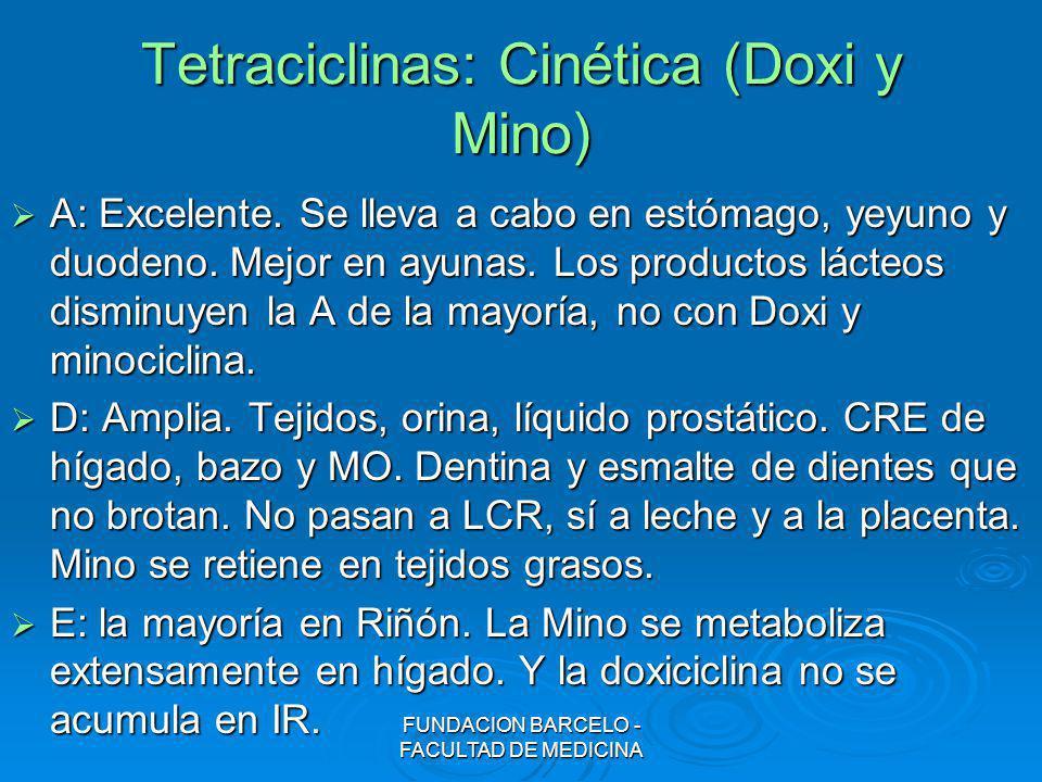 FUNDACION BARCELO - FACULTAD DE MEDICINA Tetraciclinas: Cinética (Doxi y Mino) A: Excelente. Se lleva a cabo en estómago, yeyuno y duodeno. Mejor en a